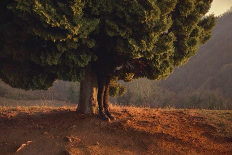 giorgia bellotti